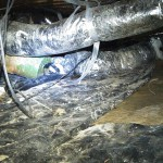 Messy Crawl Space - Timco Insulation & Fireplaces